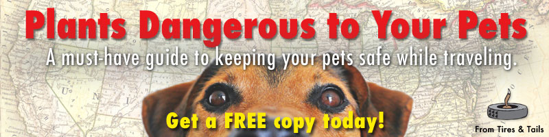 Get your copy of our FREE pet safety guide