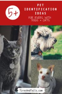 Pet identification pin image