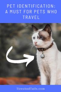 Pet identification