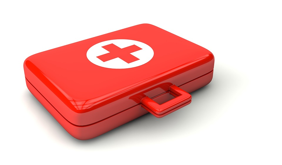 A first aid kit is essential in emergency evacuations. Keep it next to your pet's emergency go bag. TiresAndTails.com