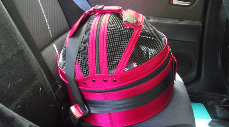 Sleepypod: Crash Tested Harnesses and Carriers For Your Dog or Cat