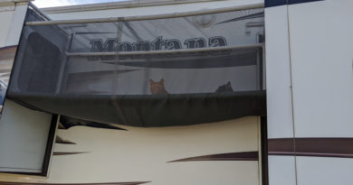 RV Cat Enclosure: An Outdoor Catio for your Adventure Cat
